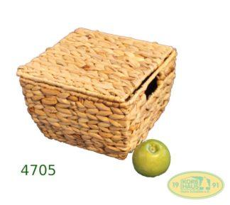 Wasserhyazithe Box Deckel
